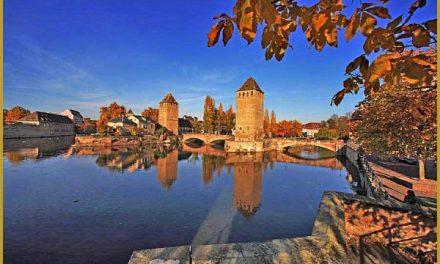 5 novembre 2016 – Ateliers WCS : Un automne en petits comités !